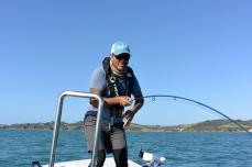 saltyflyfish