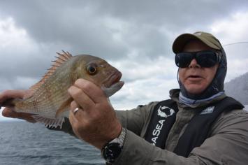saltflyfishing
